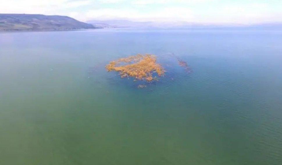האי בכנרת הולך ונעלם צילום: שי מזרחי, רשות הכינרת