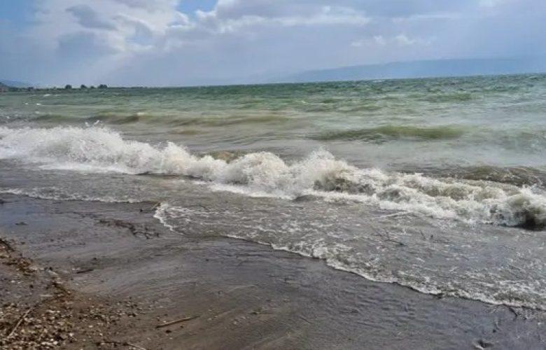 חוף דוגית  צילום: איציק לוי, רשות הכינרת