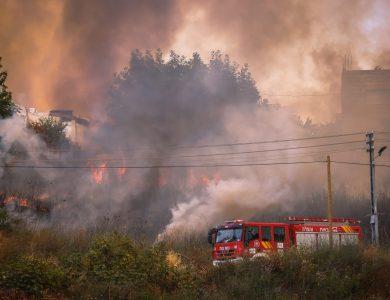 אזור השריפות בנווה אילן   צילום:  Yonatan Sindel/Flash90